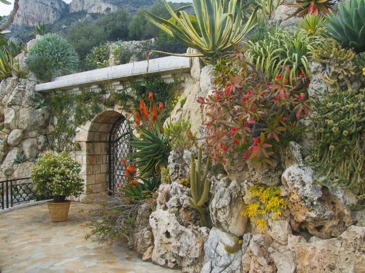 Ботанический сад Монако