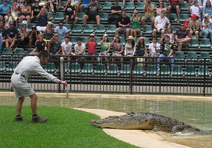 Австралийский зоопарк в Квинсленде