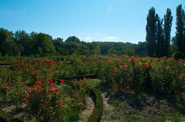 botanicheskiy-sad-kishinev