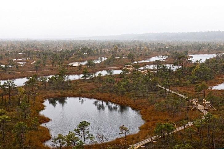 nacionalnyy-park-kemeri