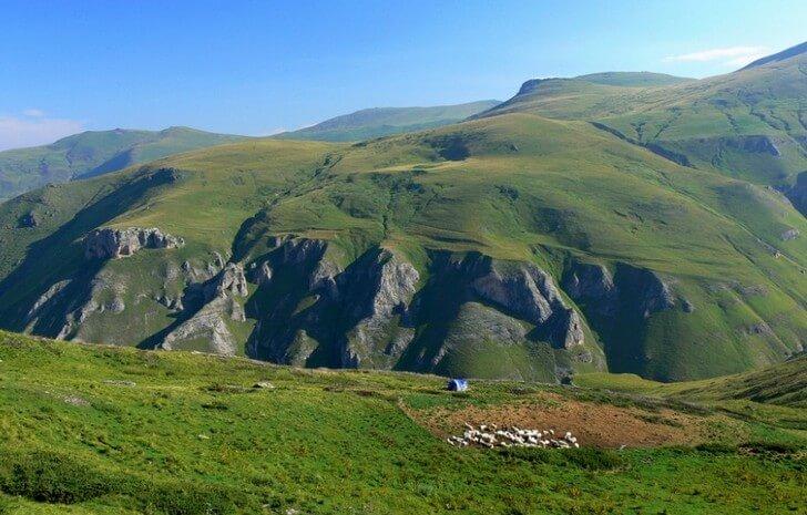 shar-planina