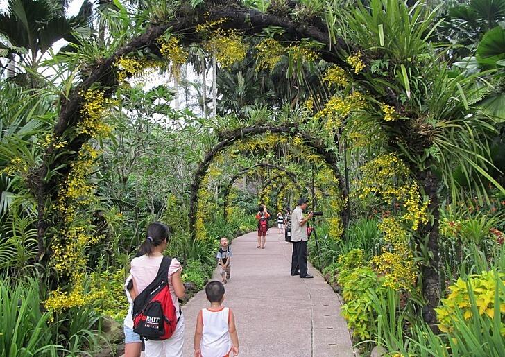 botanicheskij-sad-singapura