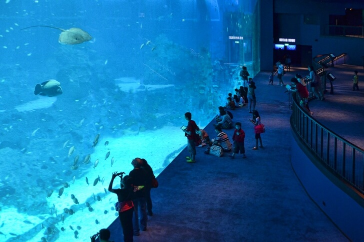 marine-life-park