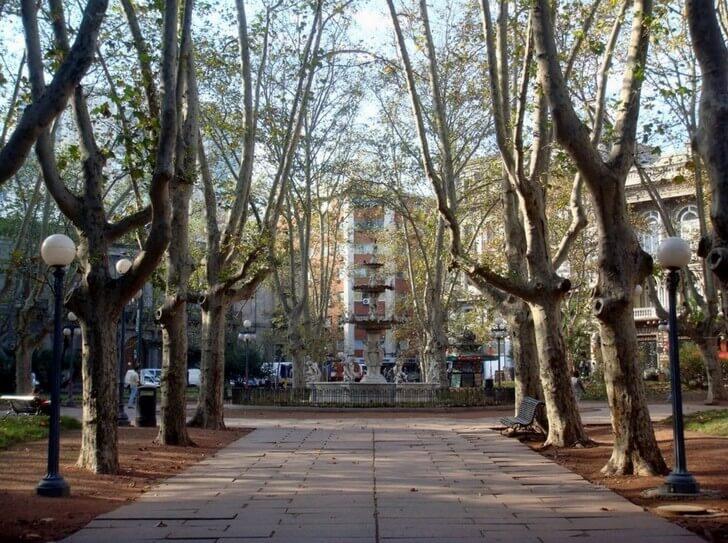 plaza-de-constitucion