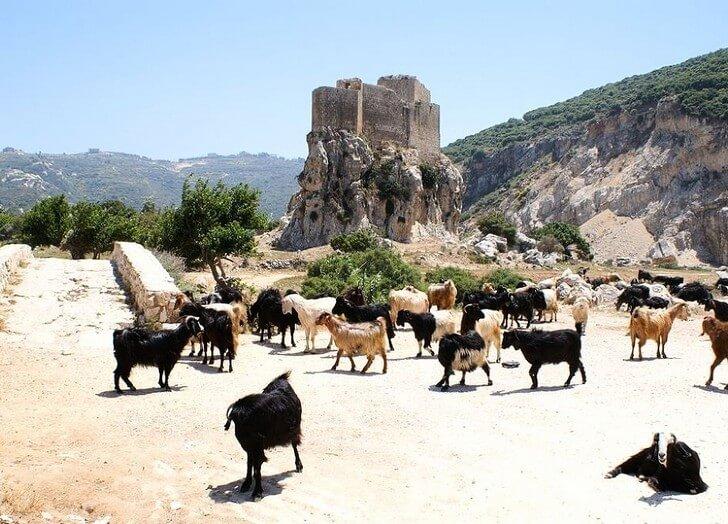 mseilha-fort