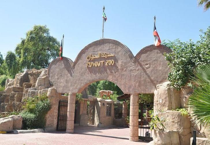 zoopark-kuveyta