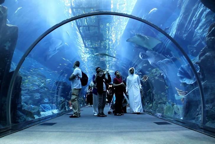 akvarium-v-dubaj-molle
