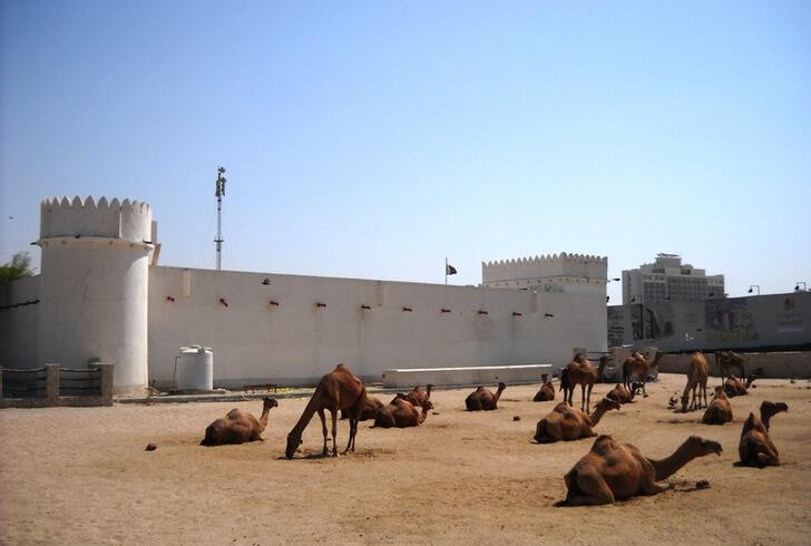 al-koot-fort