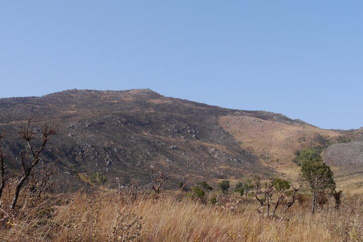 gora-moko