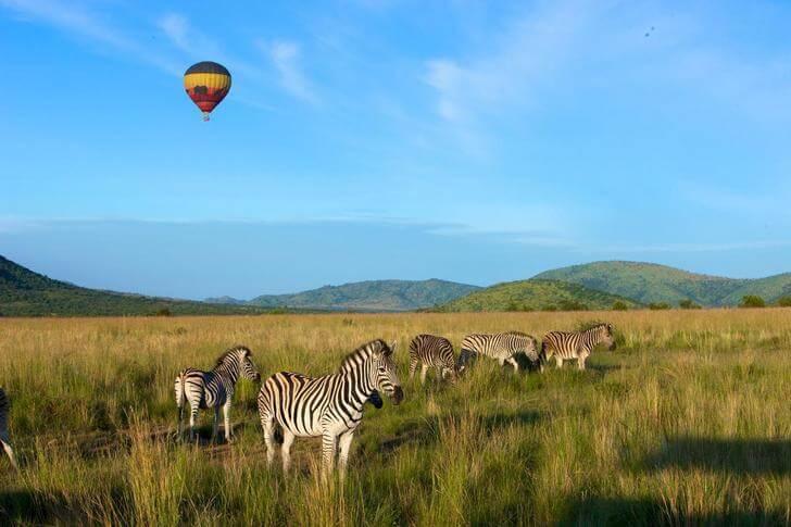 nacionalnyy-park-pilanesberg