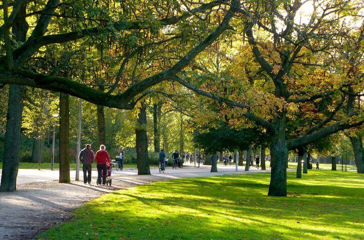 park-vondela