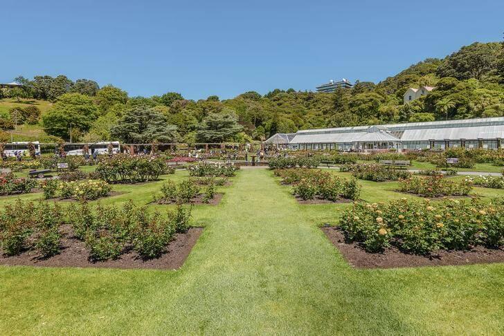 Веллингтонский ботанический сад.